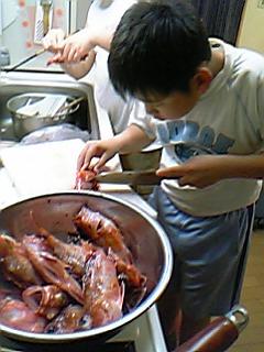 image/mimitakosu-2006-05-29T12:43:56-1.jpg