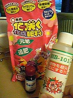 image/mimitakosu-2006-06-22T23:54:38-2.jpg